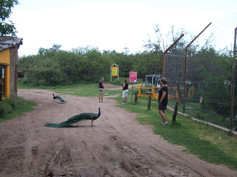 Tierpark-Gelände in den Sierras de Córdoba