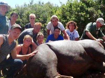 Volunteer group with Rhino