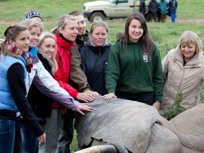 Volunteers are posing with elephant