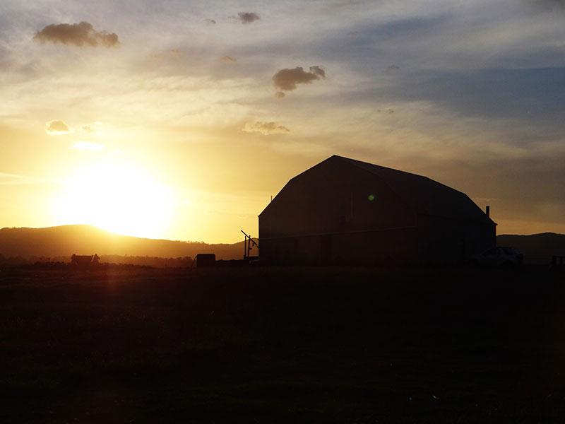 Sonnenuntergang auf der Farm