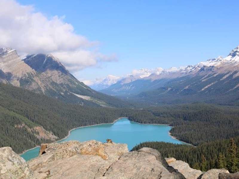 Schöne Landschaft in Alberta