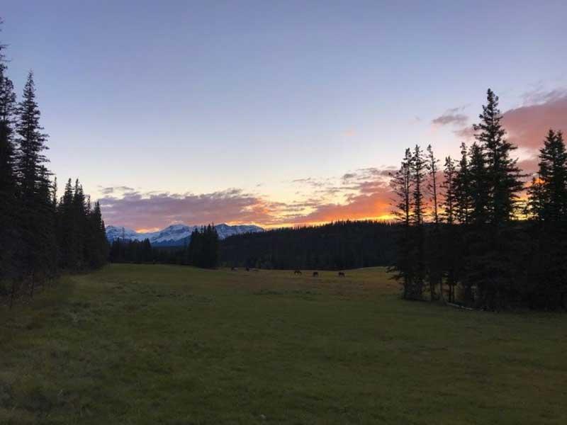 Sonnenuntergang auf Farm in Alberta